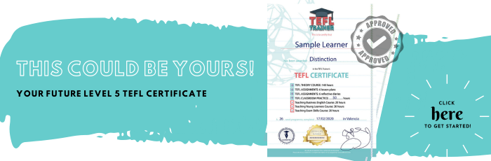 TEFL Trainer Certificate_ this could be yours!
